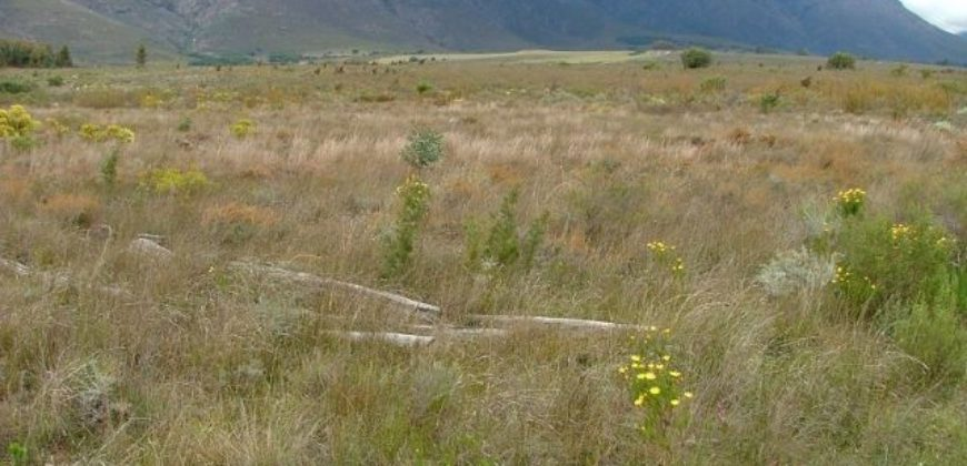 For The Conservation Minded – 23 ha