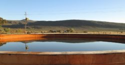 Karoo Farm with Abundant Water – 40 ha
