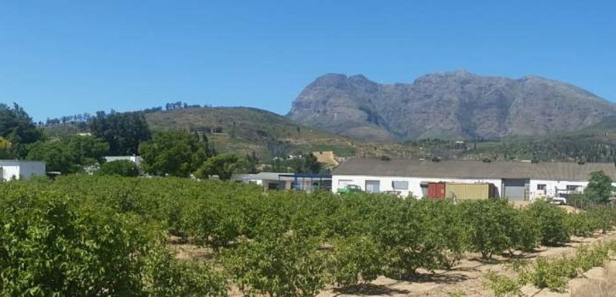 Great Investment – 5,5 ha