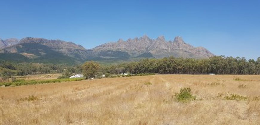 Perfect Place – 5,5 ha